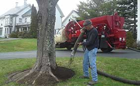 Bark Mulch Blowing in Belfast, Maine