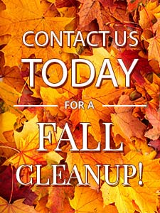 Belfast, Maine Landscaping Fall Cleanup